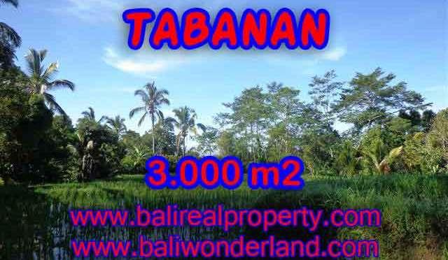 DIJUAL MURAH TANAH DI TABANAN BALI TJTB110 - PELUANG INVESTASI PROPERTY DI BALI