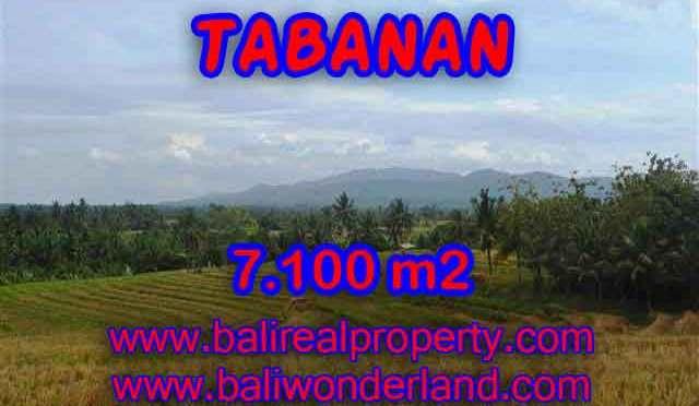 Jual Tanah murah di TABANAN TJTB125 - Kesempatan investasi property di Bali