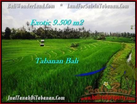 JUAL TANAH MURAH di TABANAN BALI Untuk INVESTASI TJTB210