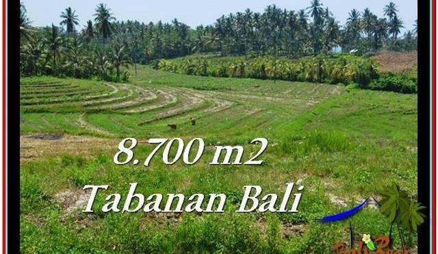 TANAH MURAH di TABANAN BALI 8,700 m2 di Tabanan Selemadeg