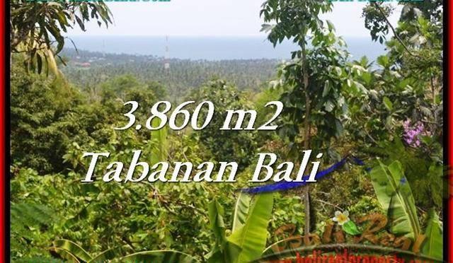 TANAH DIJUAL MURAH di TABANAN BALI TJTB236