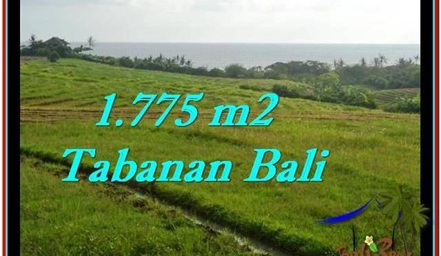TANAH di TABANAN BALI DIJUAL MURAH 17.75 Are View sawah, laut dan gunung