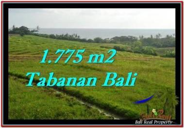 DIJUAL TANAH di TABANAN Untuk INVESTASI TJTB251