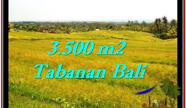 JUAL MURAH TANAH di TABANAN BALI 35 Are View sawah dan laut