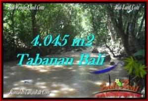 JUAL TANAH di TABANAN BALI 4,045 m2  view sungai dan kebun
