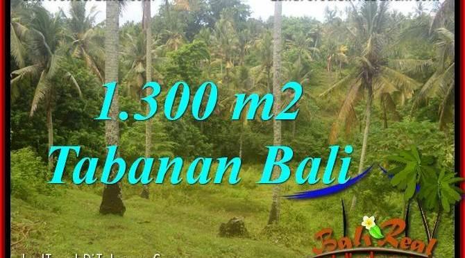 DIJUAL TANAH MURAH di TABANAN BALI TJTB314