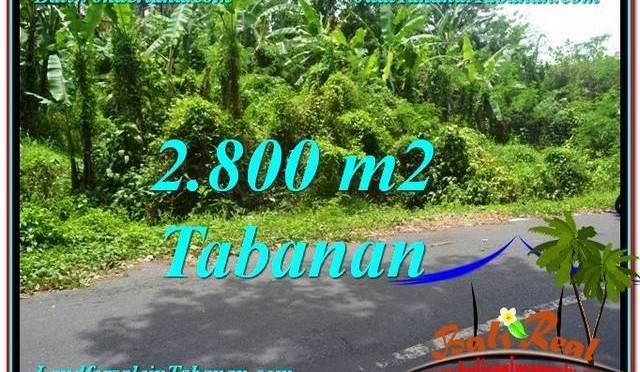 JUAL TANAH MURAH di TABANAN BALI TJTB300