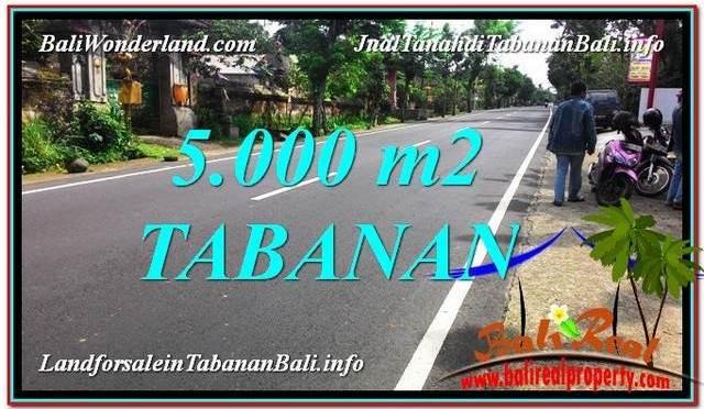 INVESTASI PROPERTI, TANAH MURAH DIJUAL di TABANAN BALI TJTB332
