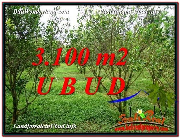 TANAH MURAH di UBUD BALI DIJUAL 3,100 m2 View kebun