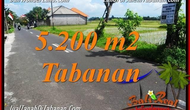 TANAH MURAH JUAL TABANAN 52 Are View sawah