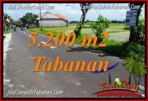 JUAL TANAH di TABANAN BALI 5,200 m2  View sawah