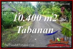 TANAH MURAH di TABANAN BALI DIJUAL 10,400 m2 di Tabanan Selemadeg Timur
