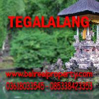 Tanah di Ubud dijual di Tegalalang Bali