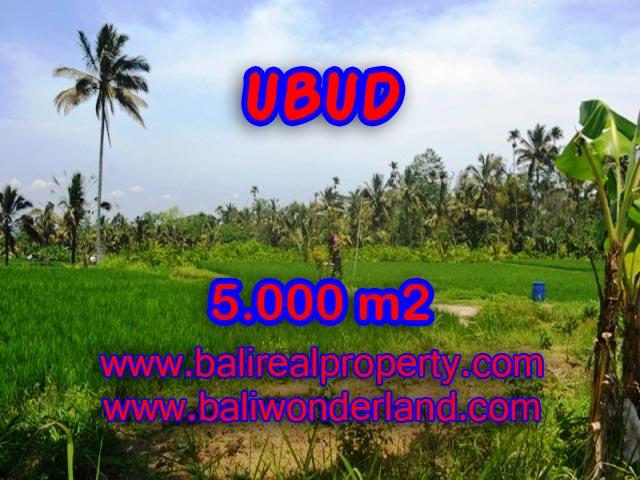 Tanah dijual di Ubud TJUB335 Kesempatan investasi Property di Bali