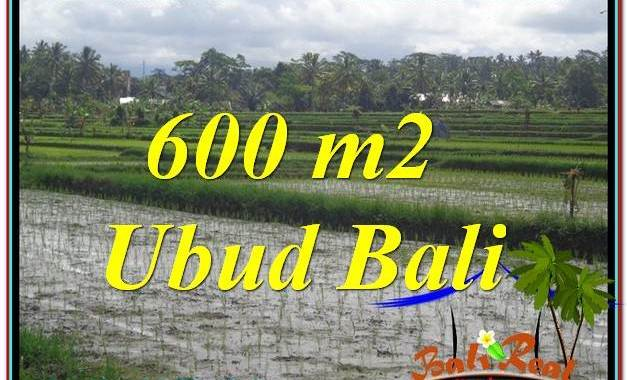 JUAL TANAH MURAH di UBUD BALI TJUB607