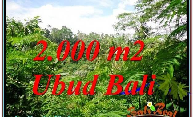 TANAH di UBUD BALI DIJUAL MURAH Untuk INVESTASI TJUB611