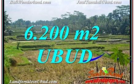 TANAH di UBUD DIJUAL MURAH 62 are di Ubud Payangan