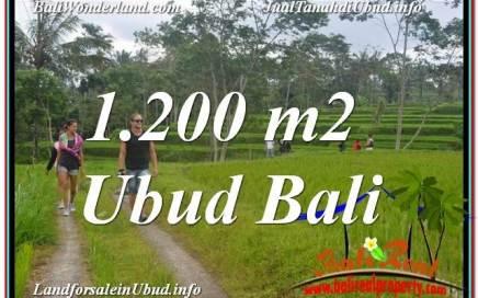 JUAL MURAH TANAH di UBUD Untuk INVESTASI TJUB624