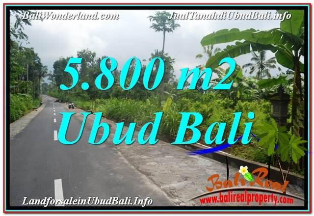 JUAL TANAH di UBUD BALI 5,800 m2  View Hutan dan Sungai