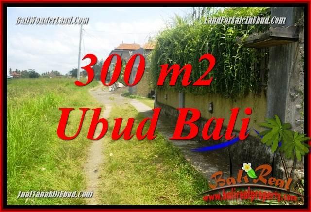 Dijual Murah Tanah di Ubud Bali 300 m2 di Lod Tunduh