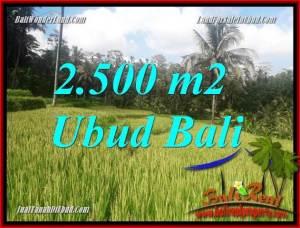JUAL Tanah di Ubud 25 Are View sawah, lingkungan Villa