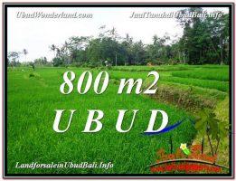 TANAH MURAH JUAL   UBUD 800 m2  View  Sawah dan sungai