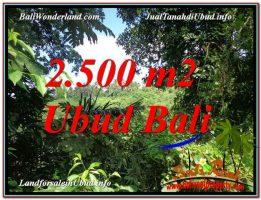 INVESTASI PROPERTI, TANAH MURAH DIJUAL di UBUD BALI TJUB605