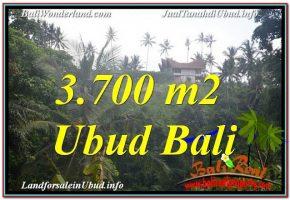 TANAH MURAH  di UBUD DIJUAL 37 Are View Tebing dan Sungai, Link. Villac