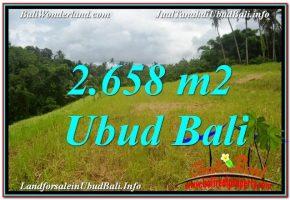TANAH MURAH  di UBUD BALI DIJUAL 2,658 m2  View Tebing dan Sungai