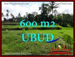 TANAH di UBUD DIJUAL MURAH 600 m2  View Sawah link Villa