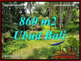 JUAL Tanah Murah di Ubud Bali 9 Are View sawah dan kebun