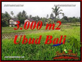 Investasi Property, jual Tanah di Ubud TJUB698