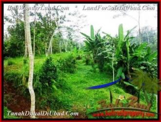 JUAL TANAH MURAH di UBUD BALI 600 m2 di Ubud Tampak Siring