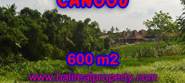 DIJUAL TANAH DI CANGGU BALI TJCG130 - INVESTASI PROPERTY DI BALI