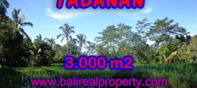 INVESTASI PROPERTI DI BALI - TANAH DI TABANAN BALI DIJUAL CUMA RP 170.000 / M2