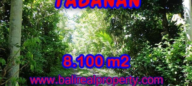DIJUAL MURAH TANAH DI TABANAN TJTB113 - INVESTASI PROPERTY DI BALI