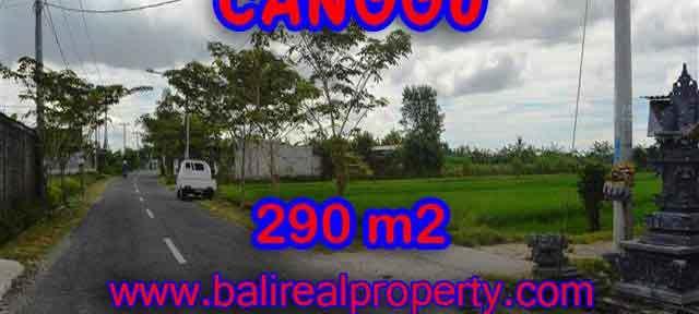 TANAH DIJUAL DI BALI, MURAH DI CANGGU RP 3.950.000 / M2 - TJCG141