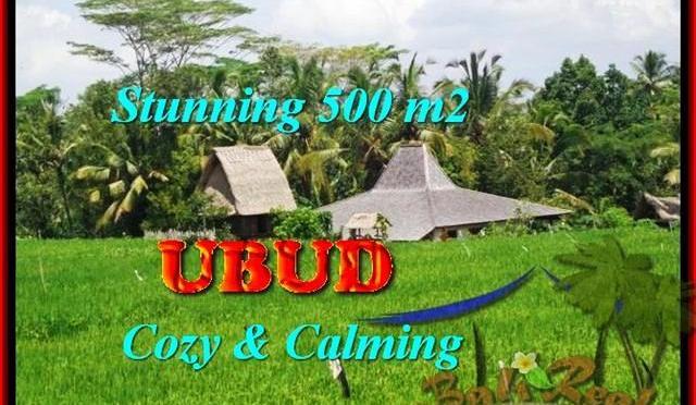 TANAH JUAL MURAH UBUD BALI 5 Are View Sawah link Villa