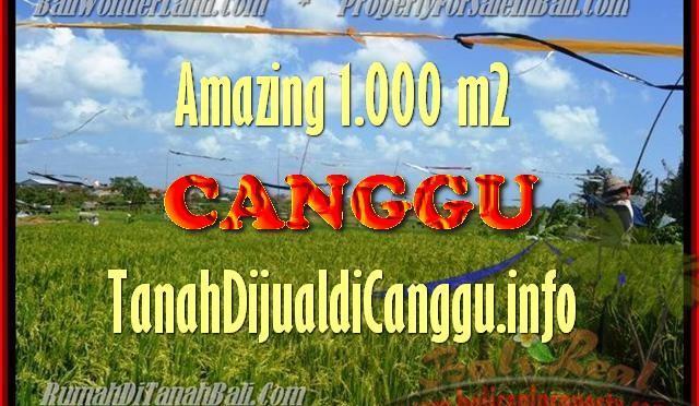 JUAL TANAH di CANGGU BALI 1.000 m2 View Sawah, lingkungan villa