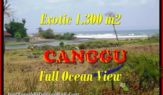 TANAH DIJUAL di CANGGU BALI 13 Are View sawah dan laut lingkungan villa