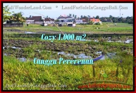 TANAH MURAH JUAL CANGGU 1,000 m2 View sawah link villa