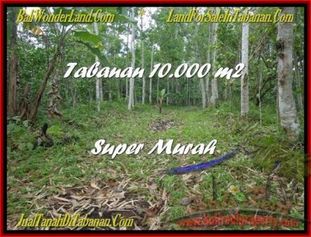 TANAH di TABANAN BALI DIJUAL MURAH 100 Are Gunung dan Kota Denpasar