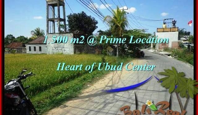 JUAL TANAH di UBUD BALI 1,500 m2 View Sawah link Villa