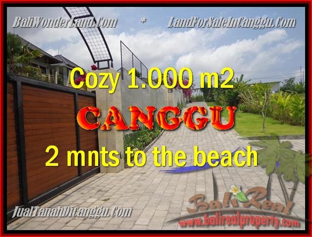 JUAL MURAH TANAH di CANGGU BALI 10 Are View Sawah dan sungai , lingkungan villa