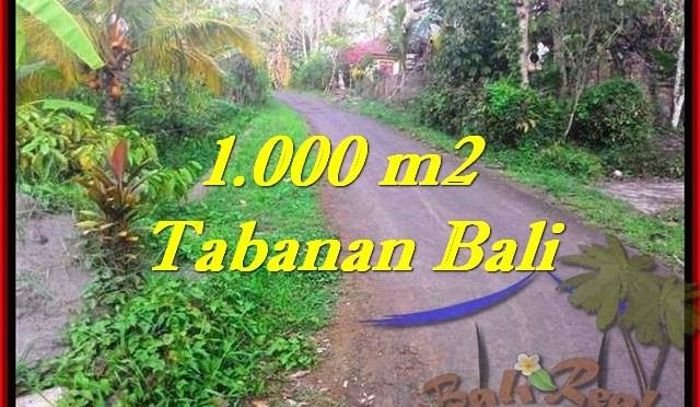 TANAH DIJUAL MURAH di TABANAN 1,000 m2 di Tabanan Selemadeg