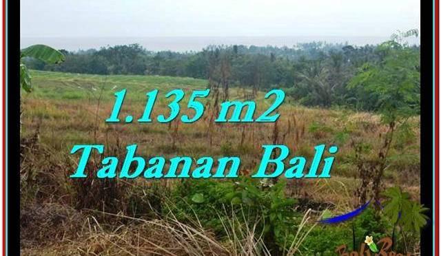 DIJUAL TANAH di TABANAN 1,135 m2 di Tabanan Selemadeg
