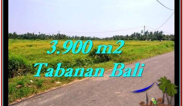 TANAH MURAH JUAL di TABANAN BALI 3,900 m2 View sawah dan laut