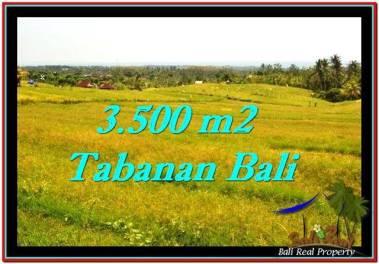 TANAH MURAH JUAL di TABANAN BALI 3,500 m2 View sawah dan laut