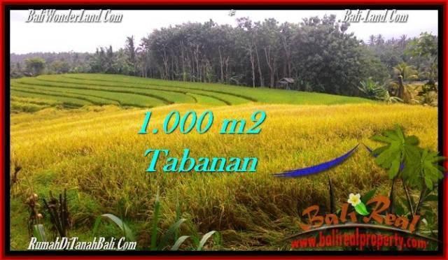TANAH MURAH di TABANAN BALI 1,000 m2 di Tabanan Selemadeg