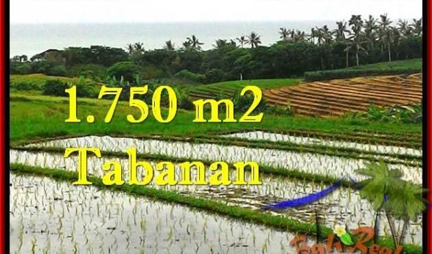 DIJUAL TANAH di TABANAN BALI Untuk INVESTASI TJTB264